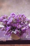 Kwiat wymienia statice obraz royalty free