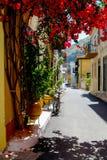 Kwiat wypełniający alleyway w Nafplion Grecja Fotografia Royalty Free