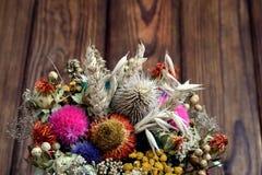 kwiat wysuszone rośliny obrazy stock