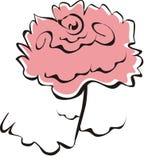 kwiat wzrastał Obrazy Royalty Free