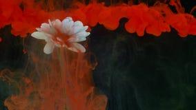 Kwiat z atramentu abstrakta tłem Zdjęcia Stock