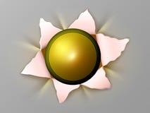 Kwiat z pocisków Zdjęcia Stock