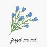kwiat zapomina ja nie ilustracja wektor
