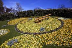 kwiat zegara Genewie Obraz Royalty Free