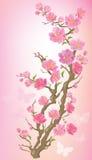 Kwiatonośna gałąź ilustracja wektor
