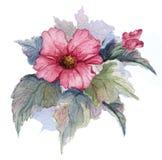 Kwiatonośna gałąź czerwony egipcjanin wzrastał na białym tle beak dekoracyjnego latającego ilustracyjnego wizerunek swój papierow ilustracja wektor