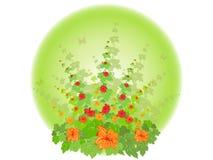 kwiatonośny krzak royalty ilustracja
