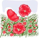Kwiatonośny pole ilustracji