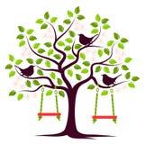 Kwiatonośny drzewo i ptaki Fotografia Royalty Free