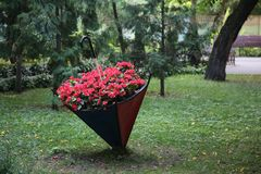 Kwiatu łóżko czerwoni kwiaty niezwykły kształt Kwiatu łóżko w postaci parasola fotografia stock