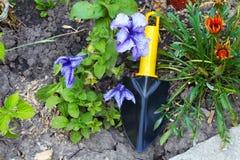 Kwiatu łóżko i Ogrodniczy rozmaity fotografia stock