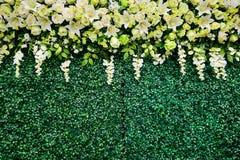 Kwiatu ślub jest tłem weddingday zdjęcia royalty free