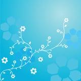 kwiatu błękitny zawijas Fotografia Stock
