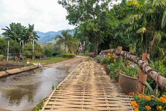 Kwiatu bambusa droga i most Fotografia Stock