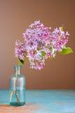 kwiatu bez Zdjęcia Stock