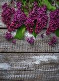 Kwiatu bez na drewnianym tle Fotografia Stock