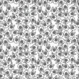 Kwiatu bezszwowy wzór na białym tle Obraz Stock