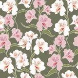 Kwiatu bezszwowy wzór z pięknymi alstroemeria lelui kwiatami rozgałęzia się na zielonym tło szablonie ilustracji