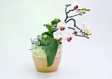 kwiatu biel Fotografia Stock