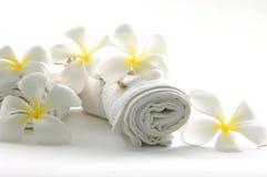 kwiatu biel Obrazy Stock