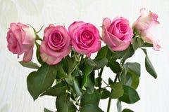 Kwiatu bukiet w świetle słonecznym Fotografia Royalty Free