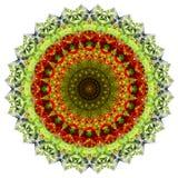 Kwiatu bukieta abstrakt 4 Zdjęcia Royalty Free