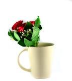 Kwiatu Ceramiczny szkło zdjęcia royalty free