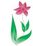 kwiatu czerwieni wektor Obrazy Stock