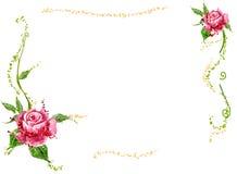 kwiatu czerwieni winogrady ilustracji