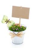kwiatu dekoracyjny znak Obrazy Royalty Free