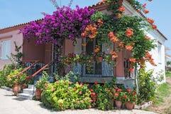 kwiatu dom Fotografia Royalty Free