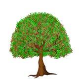 Kwiatu drzewa ilustracja Zdjęcie Stock
