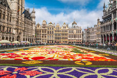 Kwiatu dywan w Bruksela 2016 Fotografia Royalty Free