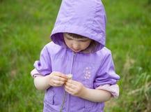 kwiatu dziewczyny mały bawić się Zdjęcia Stock