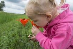 kwiatu dziewczyny mały target771_0_ Fotografia Stock