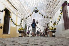 Kwiatu festiwal od ziemi Fotografia Stock