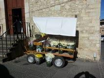 Kwiatu furgon obraz stock