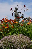 Kwiatu Garden Obraz Royalty Free