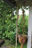 Kwiatu garnek na ganeczku podczas ulewnego deszczu 30793 Zdjęcia Royalty Free