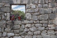 Kwiatu garnek na otwartym okno Fotografia Stock