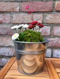 Kwiatu garnek robić cynk na drewnianym stole przed ściana z cegieł Obraz Stock