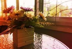 Kwiatu garnek robi lekkiej miękkiej części i plamie obrazy royalty free