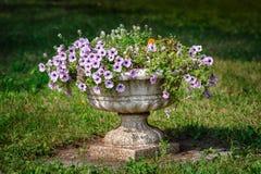 Kwiatu garnek w parku Zdjęcie Stock