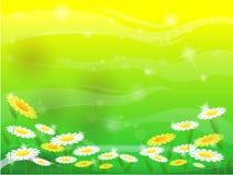 kwiatu gazon royalty ilustracja