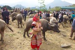 kwiatu hmong mniejszościowi ludzie Vietnam Zdjęcie Stock