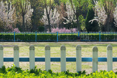 kwiatu Holland keukenhof pepiniery parka wiosna Fotografia Stock