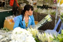 kwiatu Hong kok kong rynku mong orchidee Zdjęcia Stock