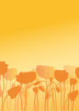 kwiatu ilustraci maczek ilustracja wektor