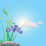 Kwiatu ilustrator Obraz Stock