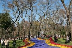 kwiatu Istanbul rzeka Zdjęcie Royalty Free